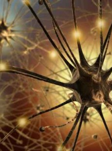 How Your Neurons Make You A Nervous Wreck (and how to rewire them)