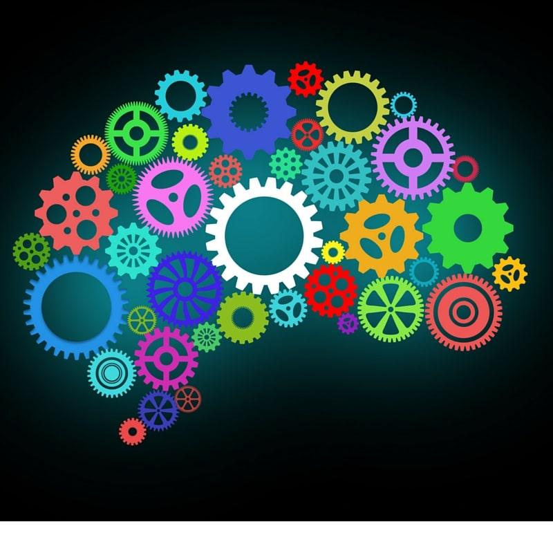 Five Ways To Grow New Brain Cells