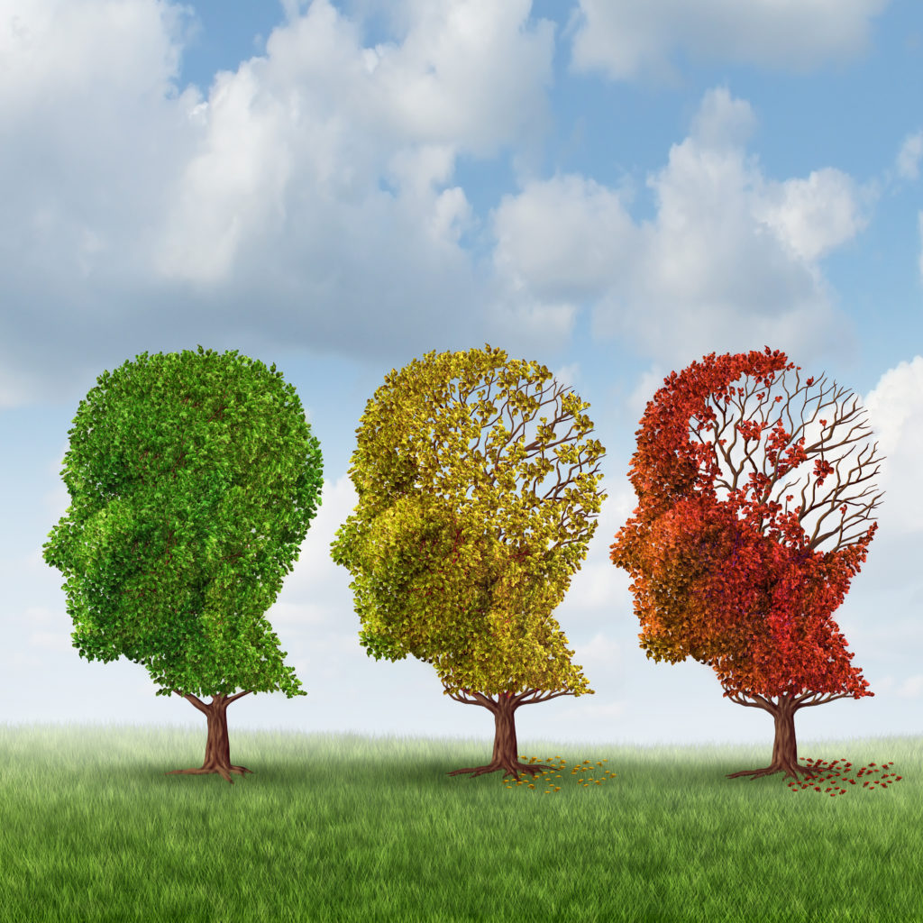 Are You Unknowingly Contributing To Your Brain's Decline?