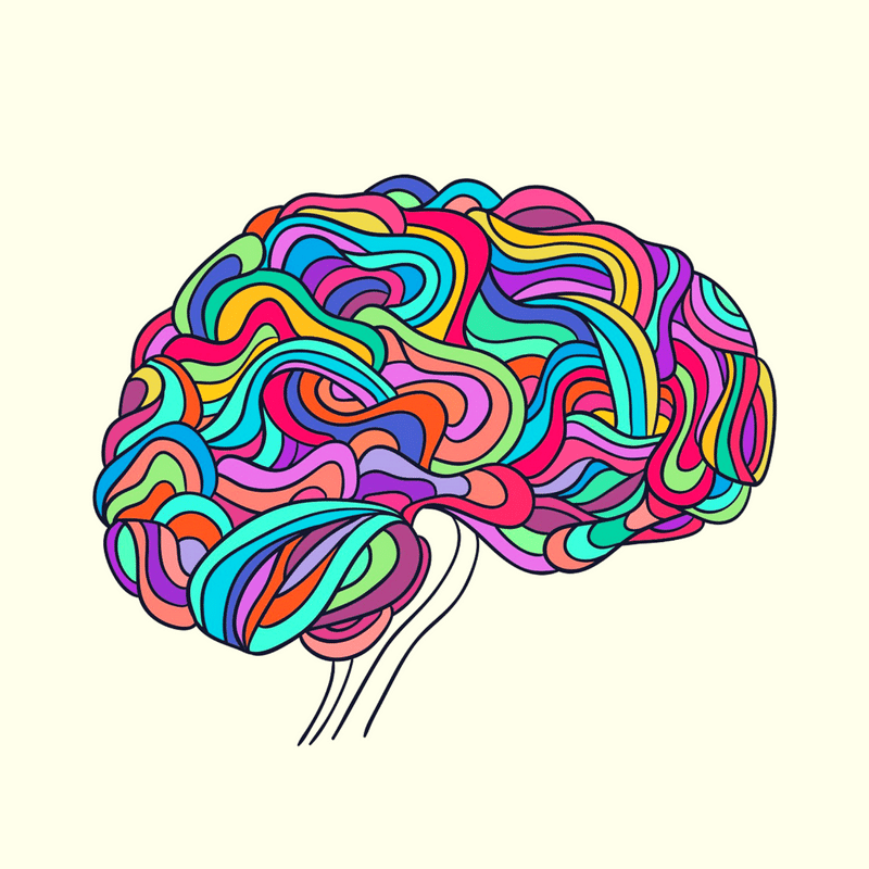The Neuroscience of Building a Resilient Brain