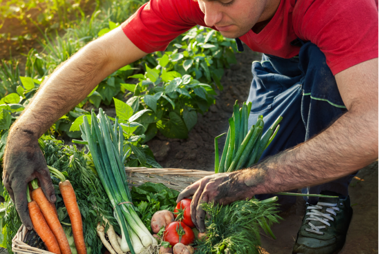 6 Ways Gardening Easily Improves Your Mental Health